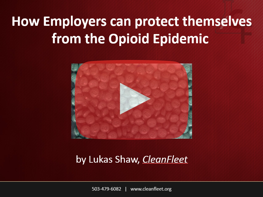 How can employers protect themselves from the opioid epiemic?